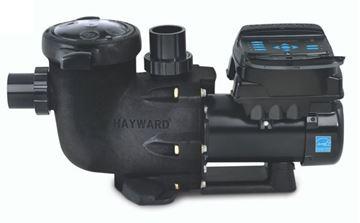 Hayward Omni Pump